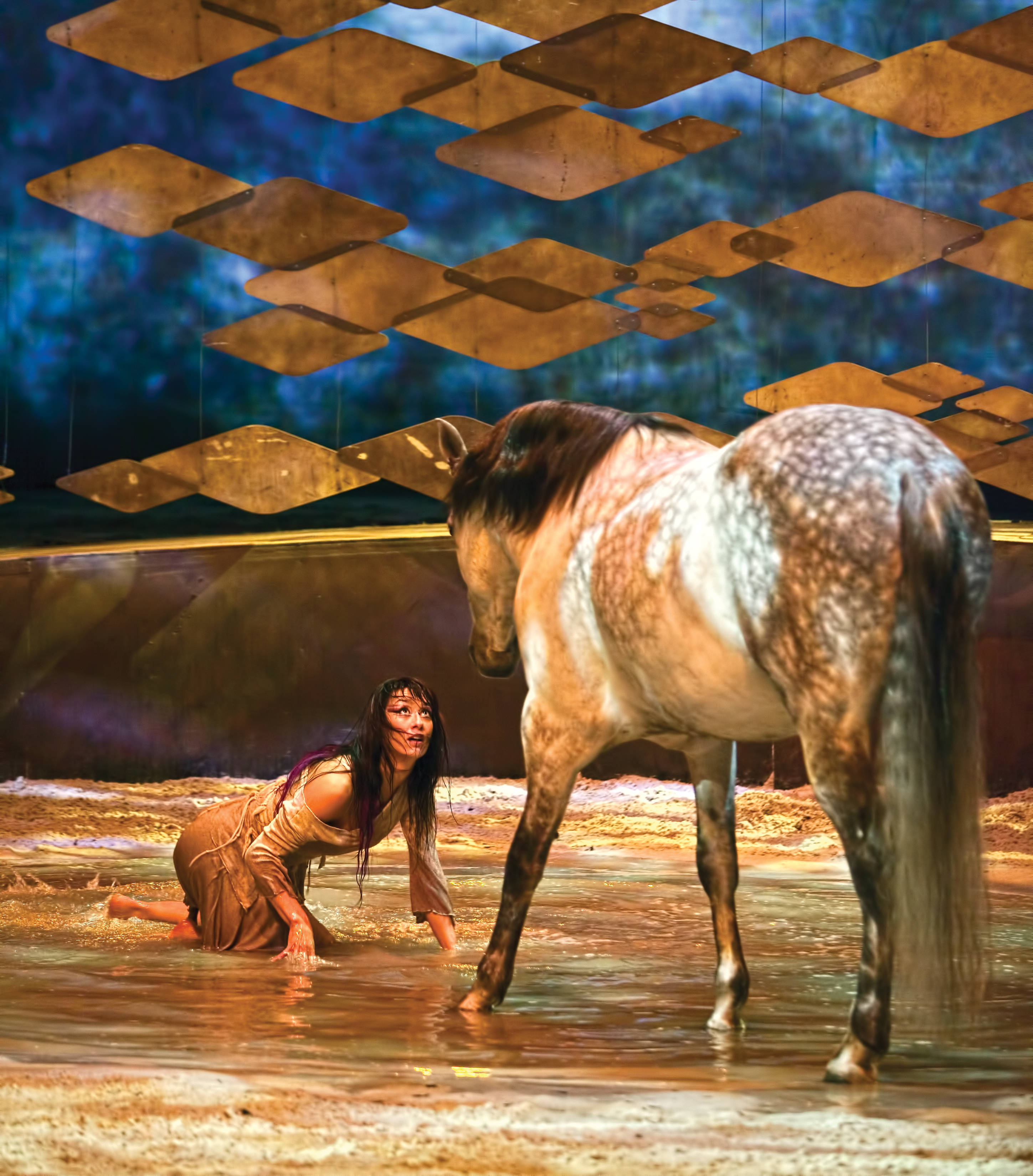 Horse circus of epic proportions horse riding holidays for Where can i go horseback riding near me