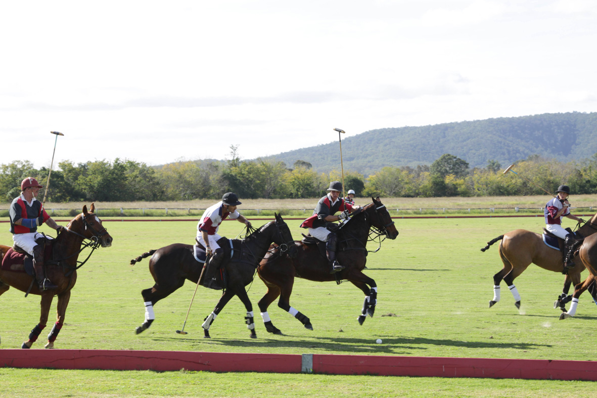 pilchers-at-the-polo-2