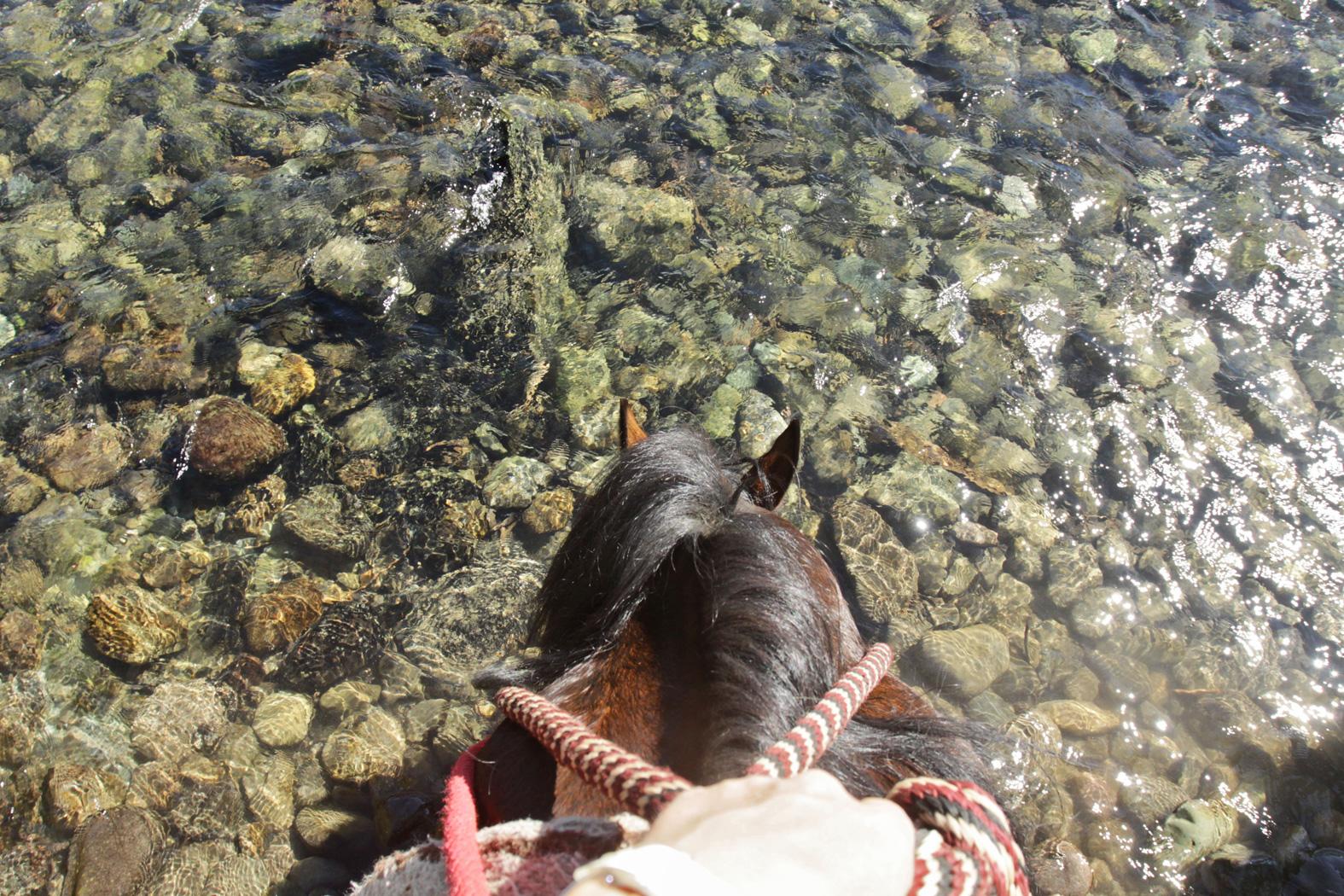 a-river-runs-wild-21